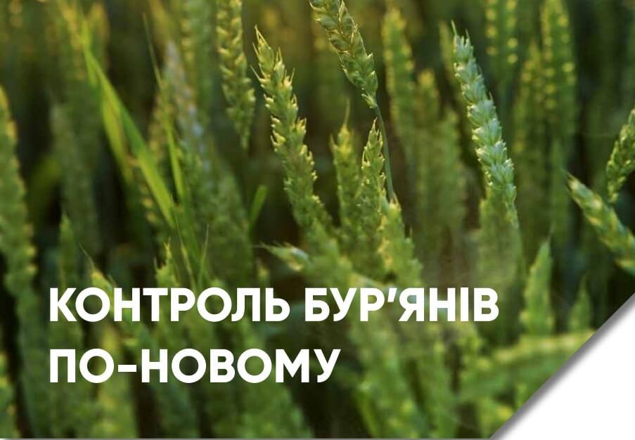 Гербіцид Квелекс для зернових - пшениці та ячменю