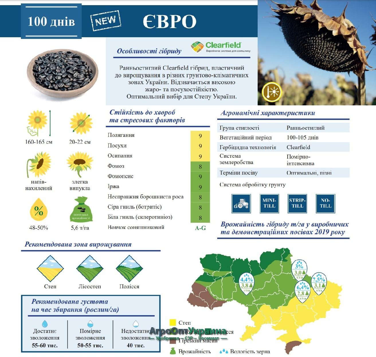 Семена Подсолнечника Евро ВНИС